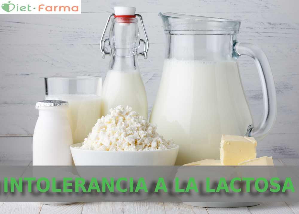 Dieta para la intolerancia a la lactosa