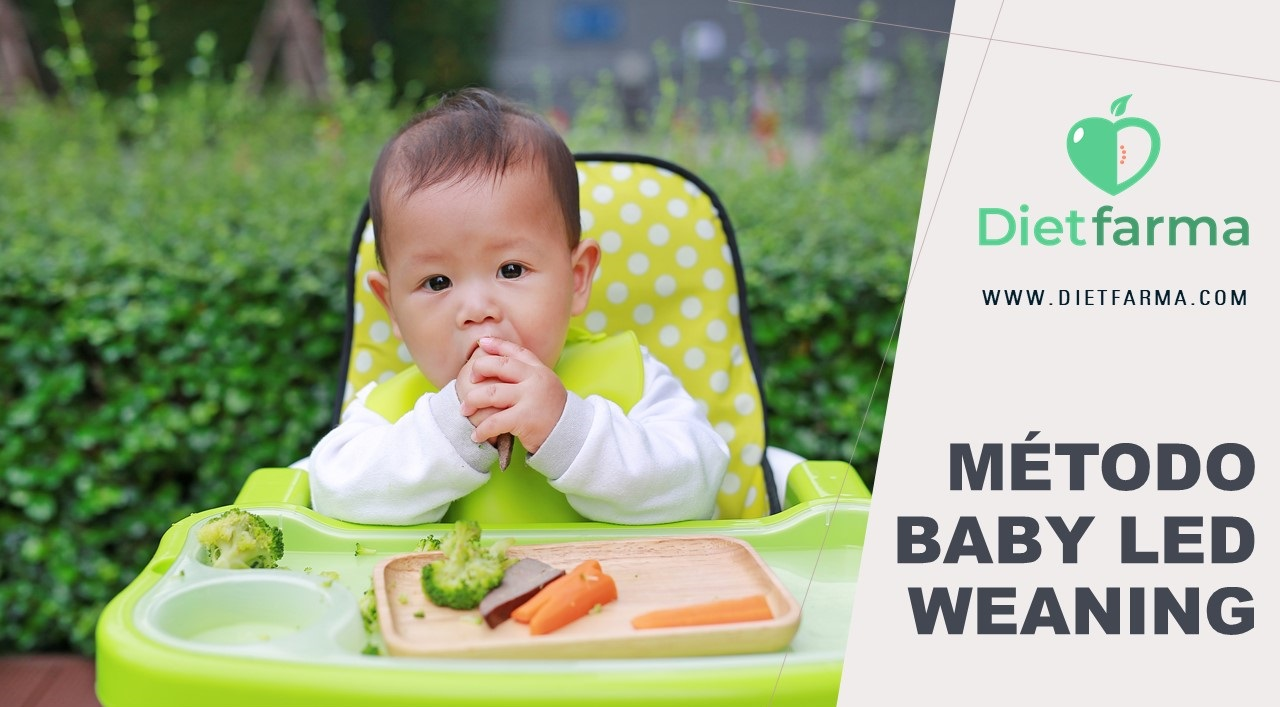 Método Baby Led Weaning